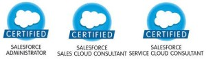Salesforce Jobs and Career Paths
